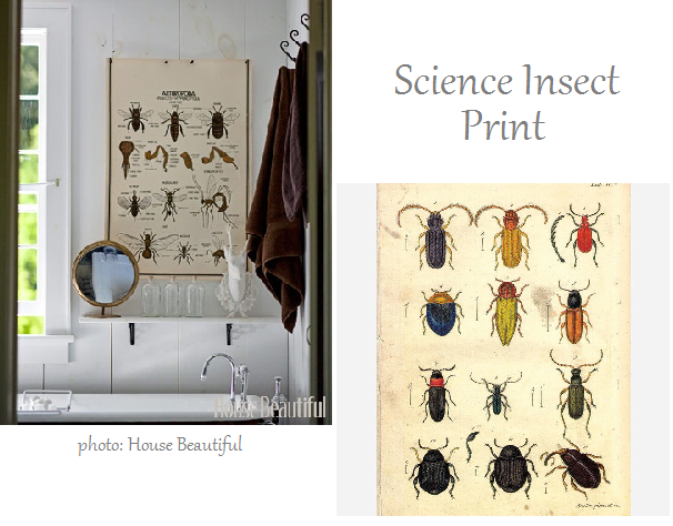 http://fab.com/inspiration/science-insect-print-2