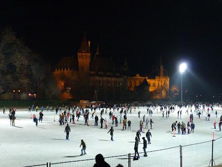 Patinoar Budapesta