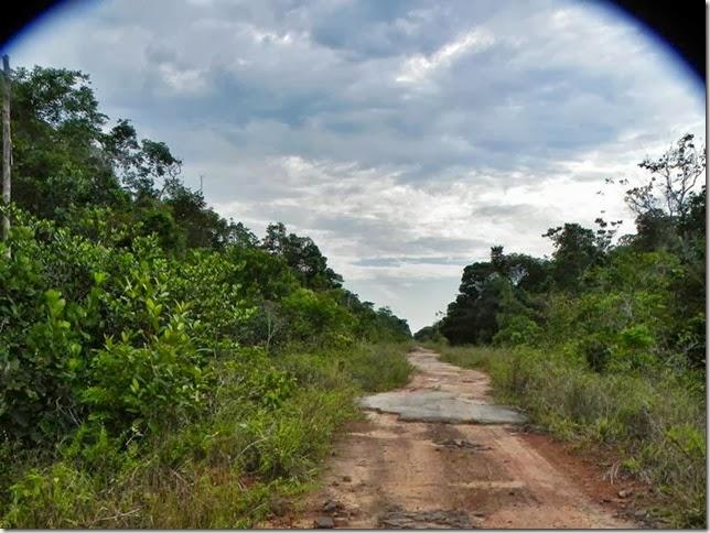 BR-319_Humaita_Manaus_Day_4_DSCN7887