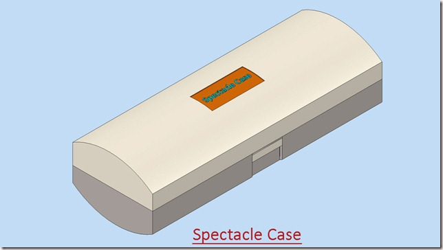 Spectacle Case_1