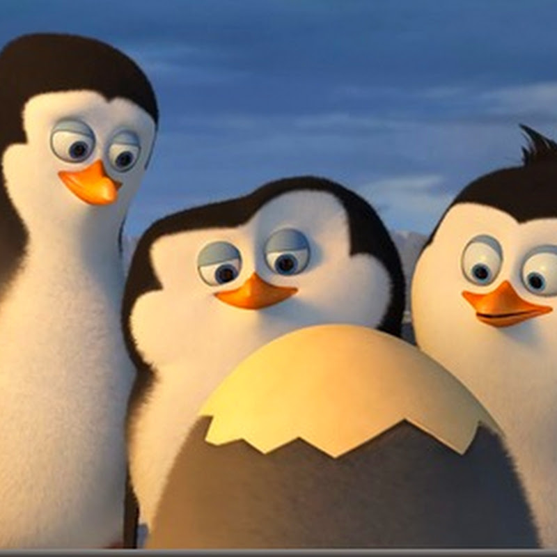 "Dreamworks ""Penguins of Madagascar"" Reveals first 4 minutes!"