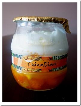 6-3-taronja confitada sorbet i iogurt-cuinadiari-