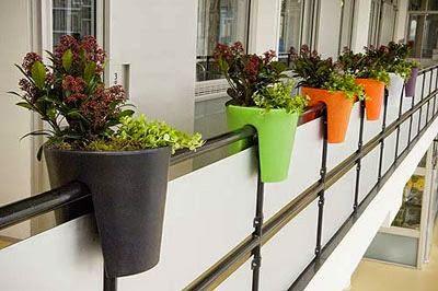 Pon flores en tu balcón