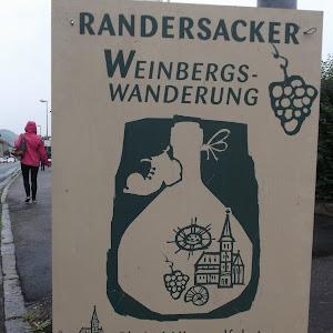 20140529_WeinbergswanderungRandersacker-01.JPG