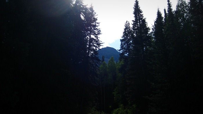 beautiful trees and a mountain top on the way to Donut Falls