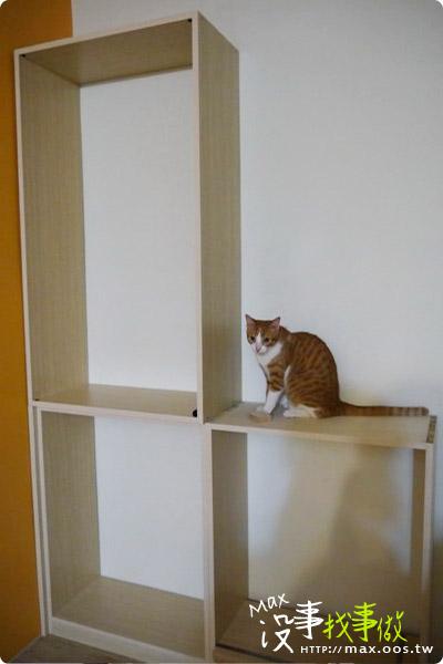 木作 ★ 實作分享- 鞋櫃+置物櫃+展示櫃+貓觀景台