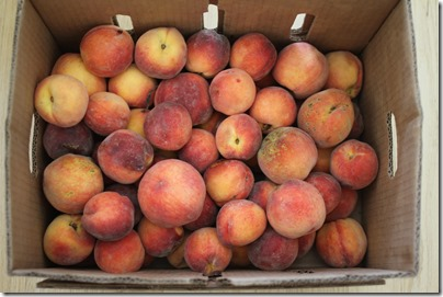 peaches via Jovial Foods Blog
