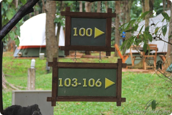 chok chai farm camp (7)