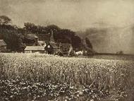 George Davison – The Onion Field (1890)