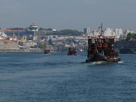 Croaziera Portugalia: Vase pe Douro