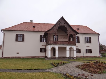 01. Castel Daniel - Talisoara.JPG
