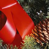 Navidad%2520Fondos%2520Wallpaper%2520%2520520.jpg