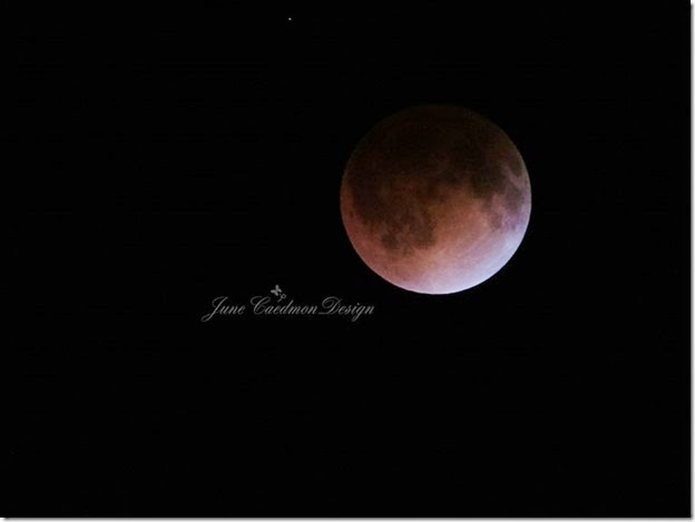 15APRL2014_Blood_Moon5