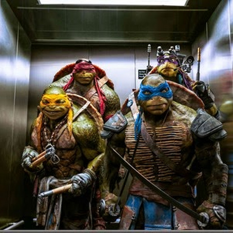Each Ninja Turtle Brings Own Unique Skills in New Action Film (Opens Aug 13)
