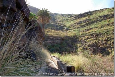 7270 Puerto Las Nieves-Barranco Oscuro