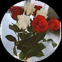 Image Google de Gantois Valentine