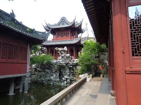 10. Gradini traditionale in Shanghai.JPG