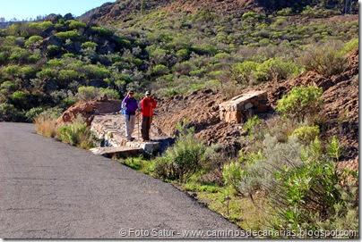 7383 Tauro-Cortadores(Presa Carretera El Pinar)
