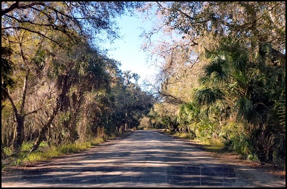 06 - Leaving Myakka - Main Park Road