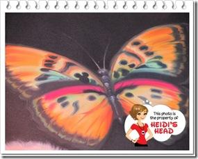 hidden mickeyDisney January 2012 08110