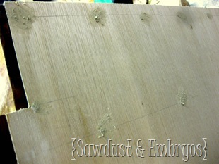Fill Nail Holes with Wood Putty! {Sawdust and Embryos}