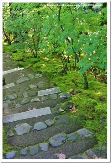 140712_PortlandJapaneseGarden_050