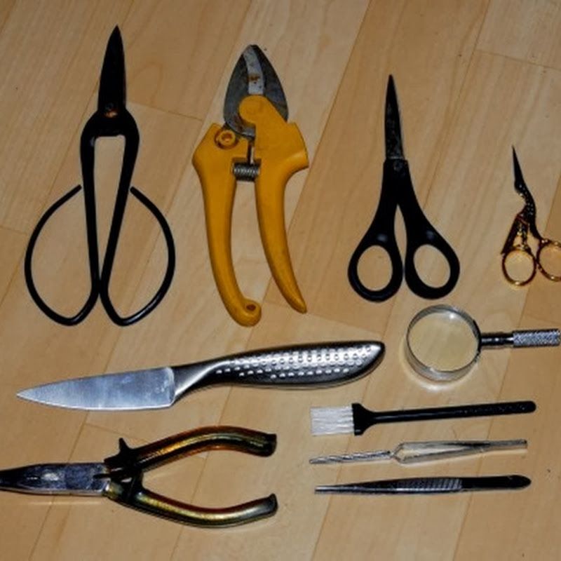 Tools for The Beginning Bonsai Artist.