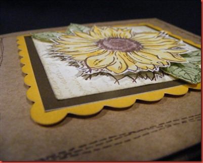 May 2012 SOTM  6x6 sunflower card close up