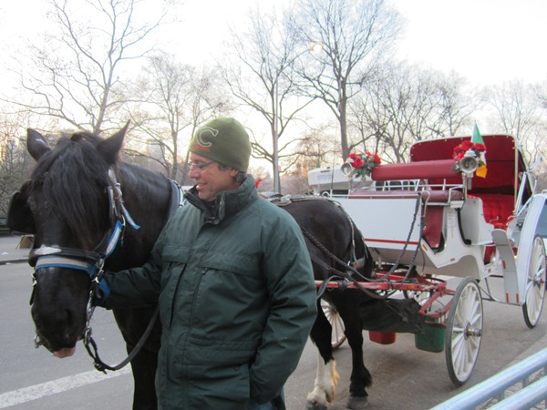 Central Park Buggy Ride