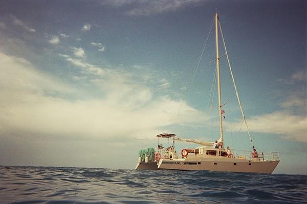 大島出海浮潛
