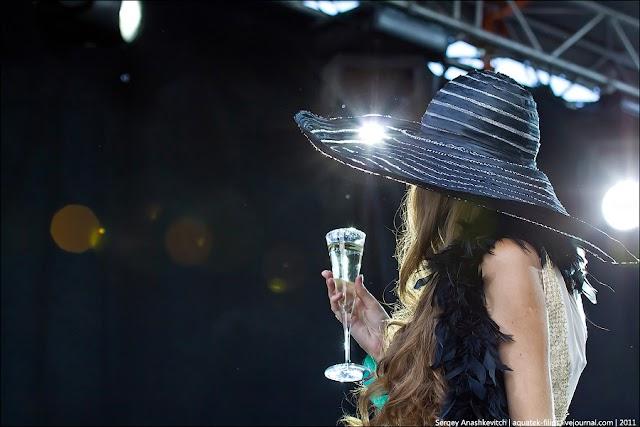 shampanimg023811.jpg