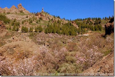 7431 La Goleta-La Candelilla(Roque El Fraile)