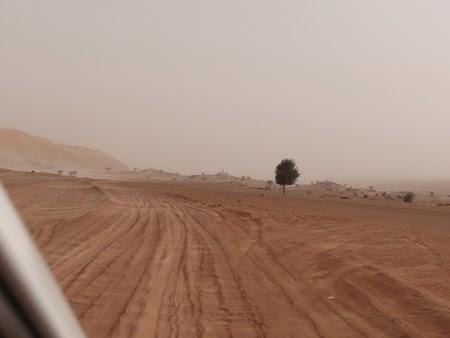25. Cu masina in desert.JPG