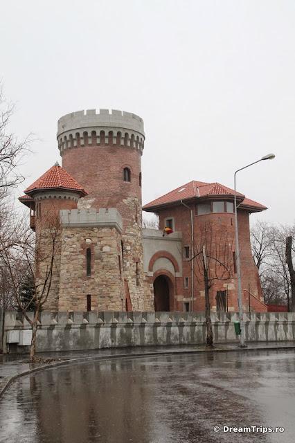Tepes castle 8010.JPG