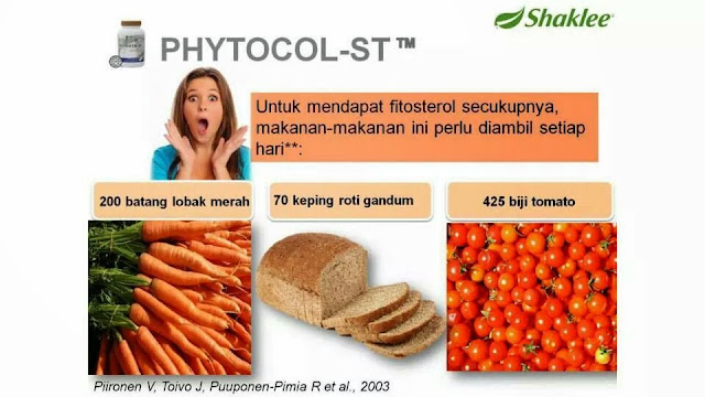 phytocol-st,launching phytocol, NC, National conference shaklee, kolesterol, fitokimia, fitosterol