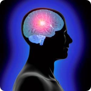 Exercicios para cerebros enferrujados