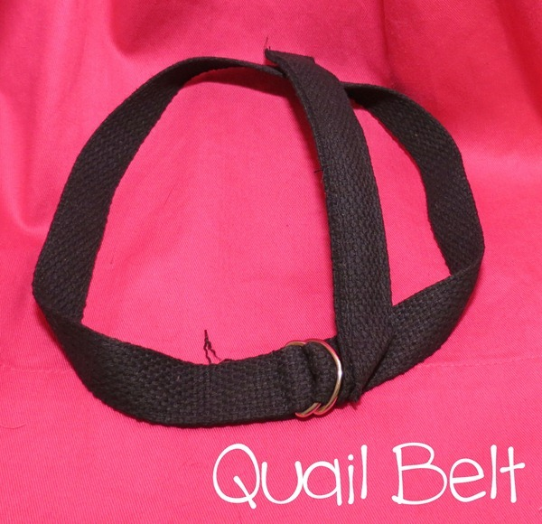 Hello Kirsti: Quailman Costume from Doug Quailman Belt Headband