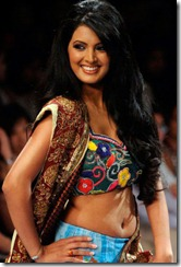 actress_geeta_basra_in_halfsaree_photo