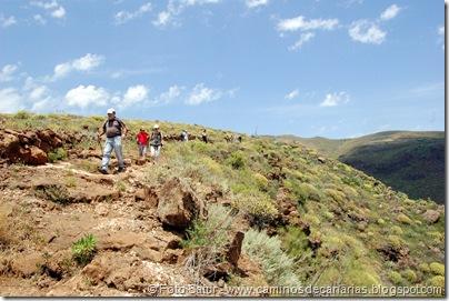 5843 Pico las Nieves-Temisas