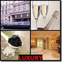 LUXURY- 4 Pics 1 Word Answers 3 Letters