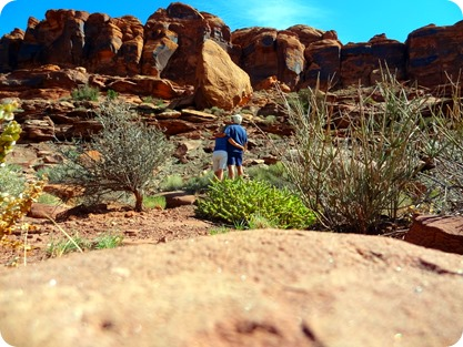 looking at red rock