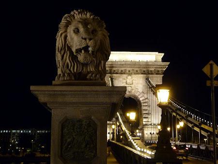 Obiective turistice Ungaria: Podul din Budapesta