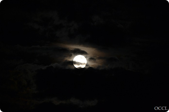 HARVESTMOON (3 of 3)