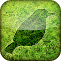 River Meadow Relax & Escape icon