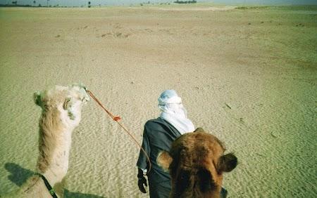 07. Beduin cu camile.jpg