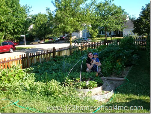 Gardening with Kids, 30-45 days after planting