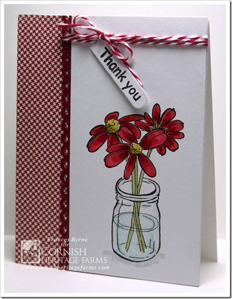CHF11 RedWhiteFlower wm