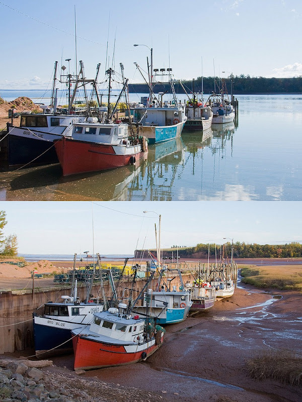 bay-of-fundy-4