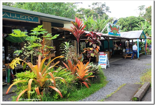 130712_Hana_Highway_Nahiku-Marketplace_040
