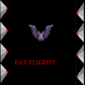 Bat Flight